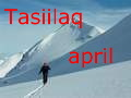 Tasiilaq in april